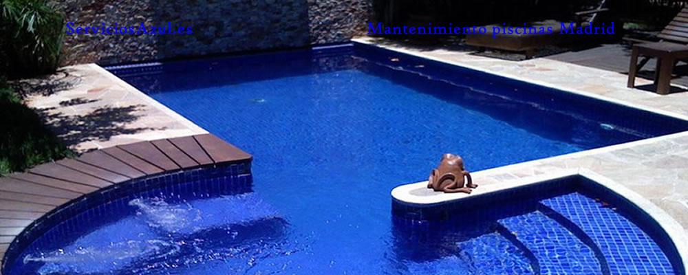 Mantenimiento piscinas las rozas de madrid for Piscina cubierta alcorcon